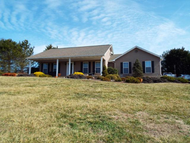 2813 Luther Catlett Circle, Sevierville, TN 37876 (#1029701) :: Shannon Foster Boline Group