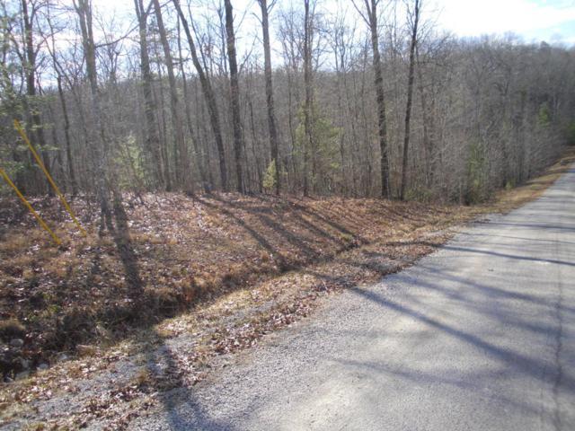 Spruce Creek Drive, Jamestown, TN 38556 (#1029712) :: Shannon Foster Boline Group