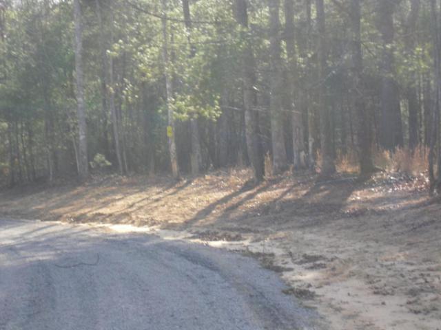 Spruce Creek Dr, Jamestown, TN 38556 (#1029720) :: Shannon Foster Boline Group