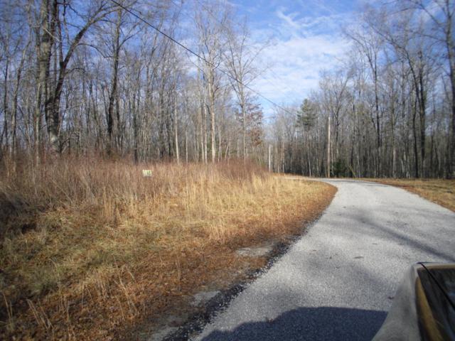 Wilderness Ln, Jamestown, TN 38556 (#1029723) :: Shannon Foster Boline Group