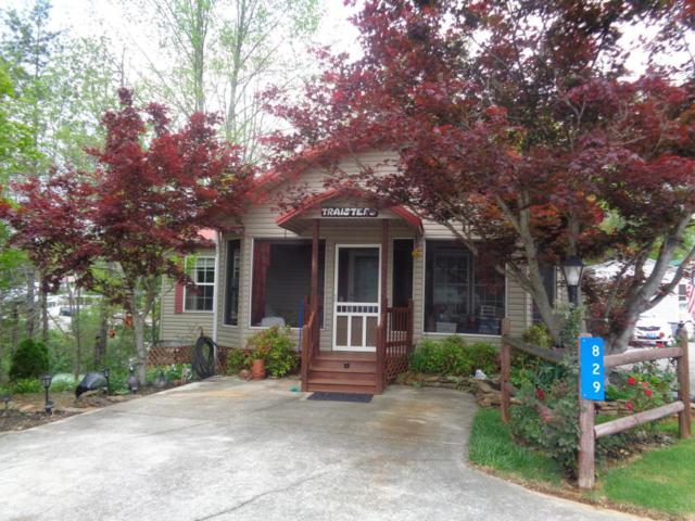 829 Peacock Ridge Drive, Townsend, TN 37882 (#1029875) :: Billy Houston Group