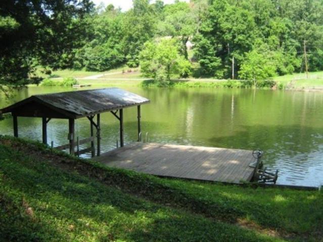 4123 Heron Hill Drive, Louisville, TN 37777 (#1029899) :: Shannon Foster Boline Group