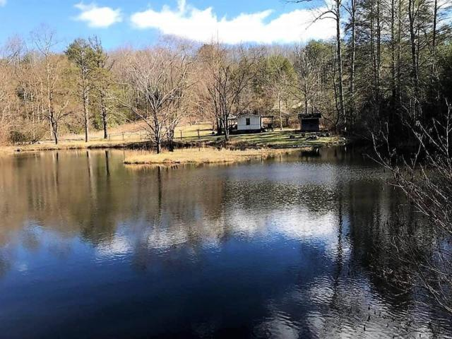 330 Smithfield Rd, Tellico Plains, TN 37385 (#1030153) :: Billy Houston Group