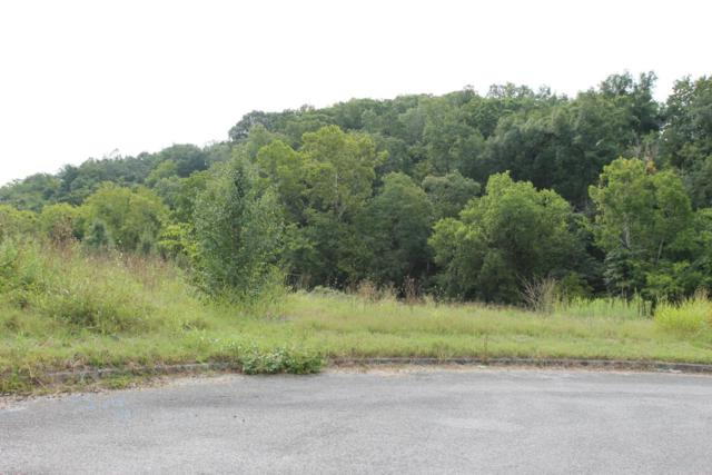 Lot 17 River Vista Circle, Sevierville, TN 37876 (#1030208) :: CENTURY 21 Legacy