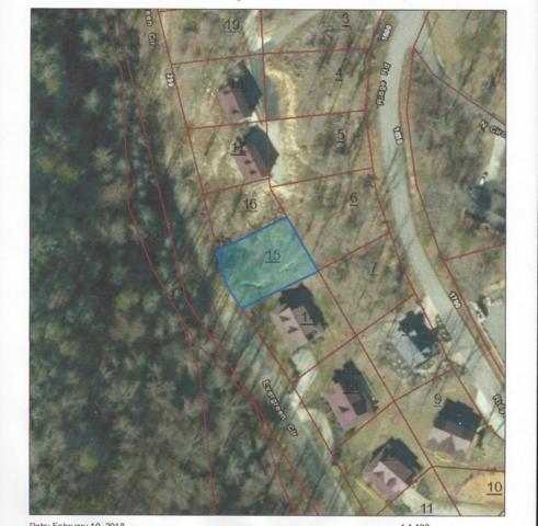 Poplar Creek Court, Caryville, TN 37714 (#1030334) :: Billy Houston Group