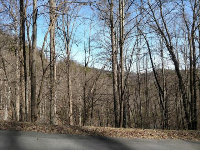 Lot 11 Whetstone Rd, Sevierville, TN 37862 (#1030409) :: Shannon Foster Boline Group