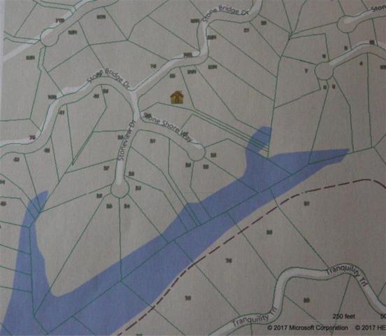 Lot #25 Stone Bridge Drive, Dandridge, TN 37725 (#1030423) :: Shannon Foster Boline Group