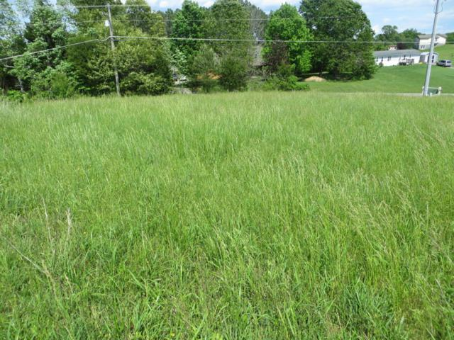 Ruggles Ferry Pike, Strawberry Plains, TN 37871 (#1030462) :: Billy Houston Group