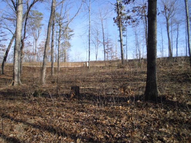 Eagle Bluff Rd, Jamestown, TN 38556 (#1030467) :: Shannon Foster Boline Group