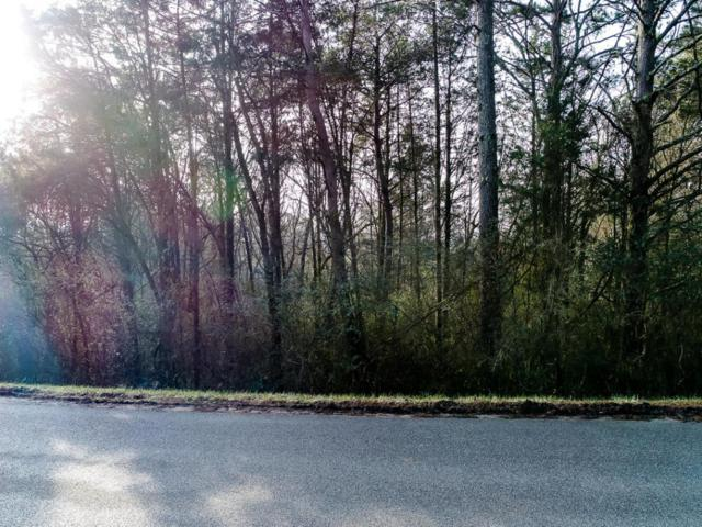 167 Cheeyo Way Way, Loudon, TN 37774 (#1030483) :: Shannon Foster Boline Group