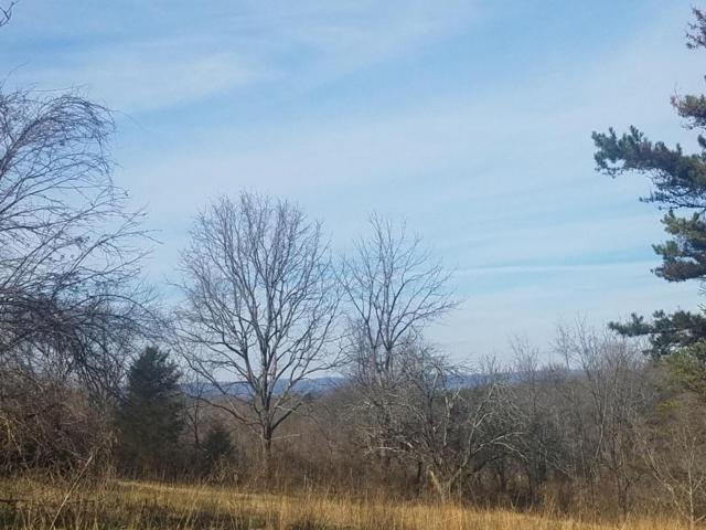 Lot 1 Shady Lane, Morristown, TN 37814 (#1030546) :: Shannon Foster Boline Group