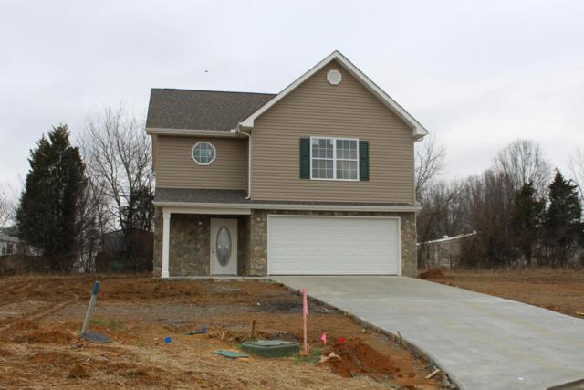 233 Rye Drive, Maryville, TN 37801 (#1030577) :: Shannon Foster Boline Group