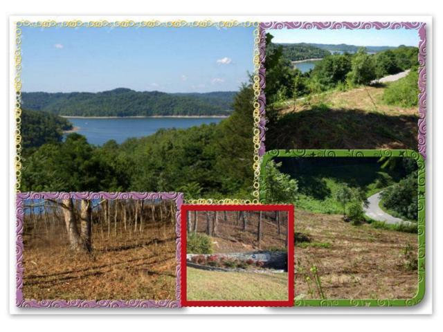 1.10 Ac. Harbor Pointe, Silver Point, TN 38582 (#1030580) :: Billy Houston Group