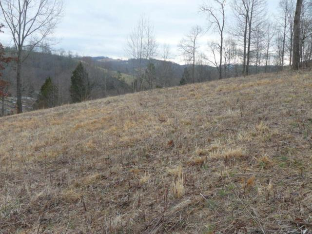 Lot 55 Cingular Drive, New Tazewell, TN 37825 (#1030612) :: The Cook Team