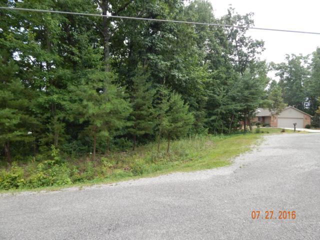 Mountain View Court, Crossville, TN 38558 (#1030708) :: Billy Houston Group