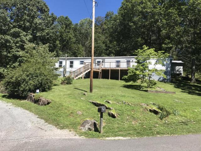 133 Davidson Hollow Rd, Heiskell, TN 37754 (#1030716) :: Billy Houston Group