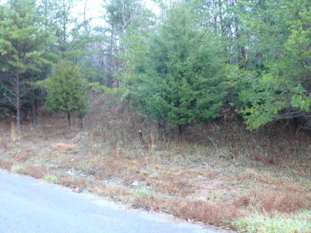 Lot 118 Settlers Point Rd, New Tazewell, TN 37825 (#1030729) :: Billy Houston Group