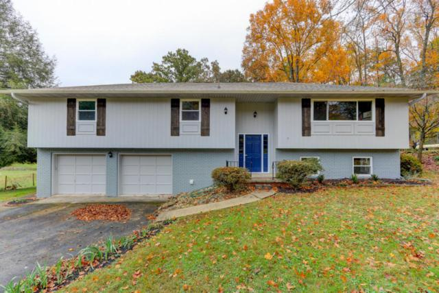 7816 Luxmore Drive, Knoxville, TN 37919 (#1030773) :: Billy Houston Group