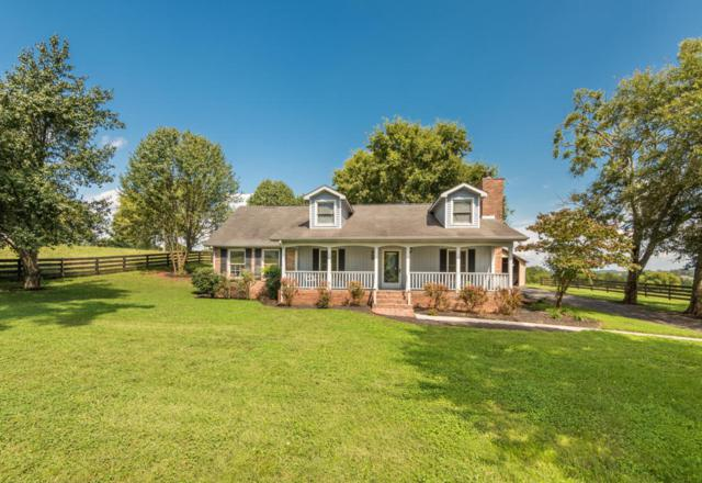 1006 Mcfee Rd, Knoxville, TN 37934 (#1030783) :: Shannon Foster Boline Group