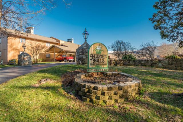1824 Oriole Rd, Gatlinburg, TN 37738 (#1030852) :: Billy Houston Group