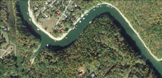 Lakemont Lane, Caryville, TN 37714 (#1030949) :: Billy Houston Group