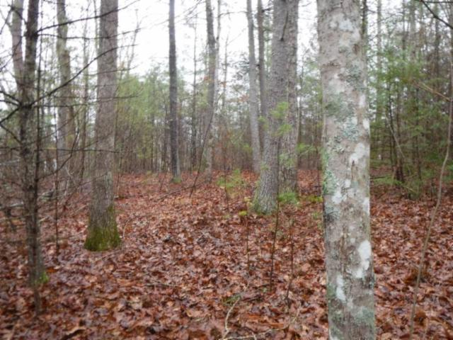 3.48ac Grace Lane, Crossville, TN 38572 (#1031119) :: Billy Houston Group