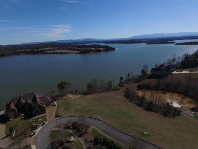 331 Goldcrest Drive, Vonore, TN 37885 (#1031155) :: Shannon Foster Boline Group