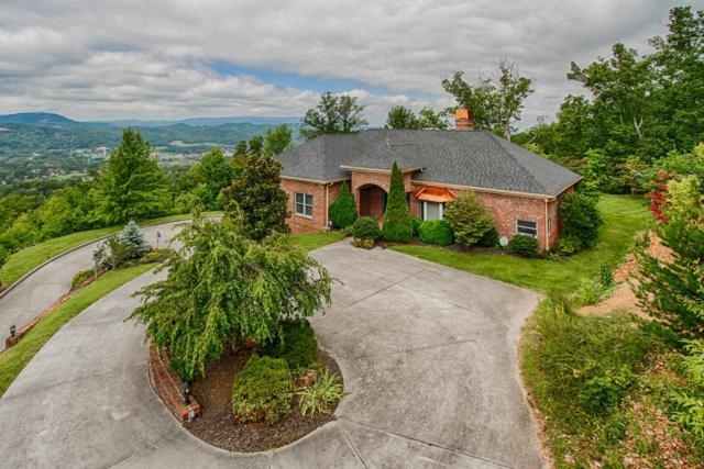 3121 Smokies Edge Rd, Sevierville, TN 37862 (#1031160) :: Shannon Foster Boline Group