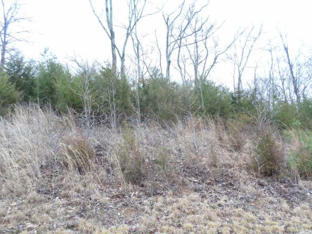 Lot 4 Walk In The Trees Drive, New Market, TN 37820 (#1031305) :: Billy Houston Group