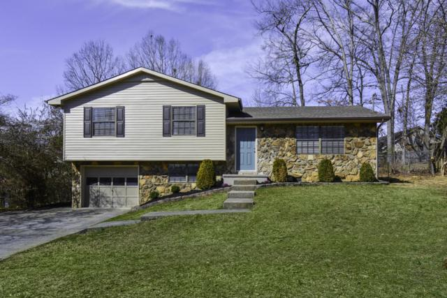7621 SW Hawthorne Drive, Knoxville, TN 37919 (#1031349) :: Billy Houston Group