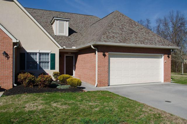 382 Paine Lake Drive, Sevierville, TN 37862 (#1031380) :: Billy Houston Group