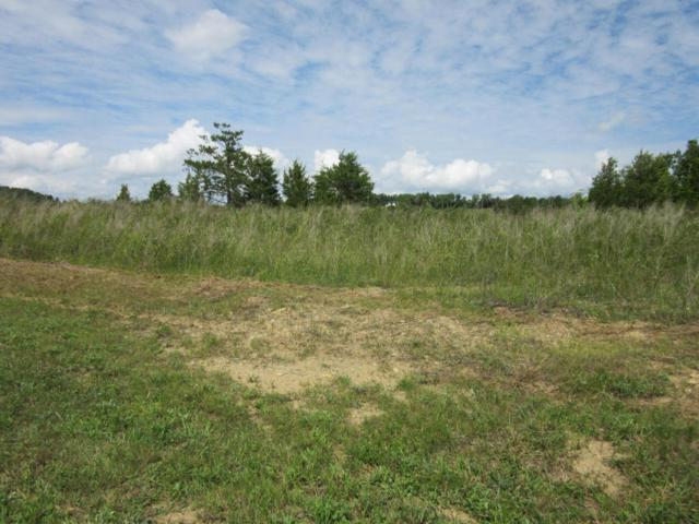 Sanctuary Shores Way, Sevierville, TN 37876 (#1031420) :: Billy Houston Group