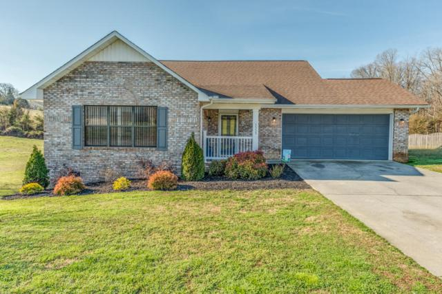 5555 Brandon Park Drive, Maryville, TN 37804 (#1031570) :: Realty Executives Associates