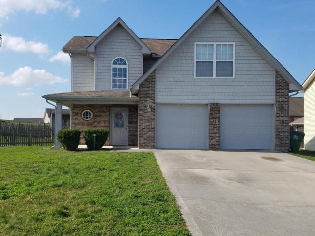 1101 Paul Lankford Drive, Maryville, TN 37801 (#1031657) :: Realty Executives Associates