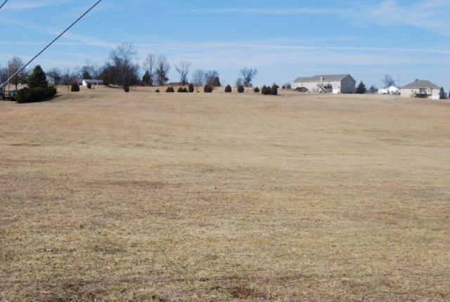 Lot 1 & 2 Burchfield Rd, Dandridge, TN 37725 (#1032101) :: Billy Houston Group