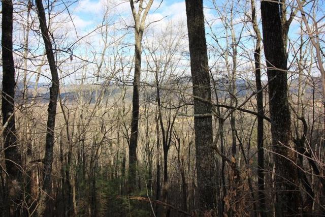 Lot 12 Little Mtn. Way, Townsend, TN 37882 (#1032216) :: Billy Houston Group