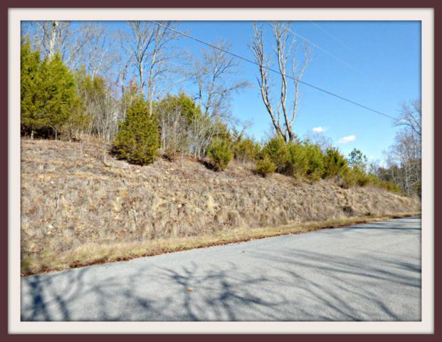 Lot 52 Fork Horn Tr, Dandridge, TN 37725 (#1032243) :: Billy Houston Group