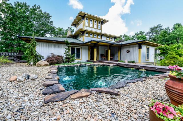 209 Gap Cove Rd, Maryville, TN 37803 (#1032251) :: Billy Houston Group