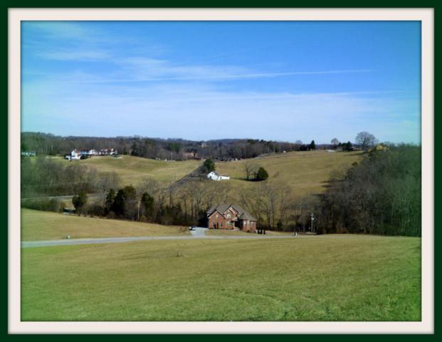 Lot 76 Serenity Overlook, Dandridge, TN 37725 (#1032446) :: Billy Houston Group
