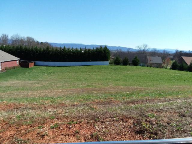 1220 Houston Springs Rd, Greenback, TN 37742 (#1032654) :: Billy Houston Group