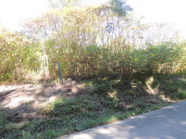 Hamilton Field Rd, Jamestown, TN 38556 (#1032707) :: Billy Houston Group