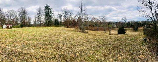 S Flat Creek Rd, Sevierville, TN 37876 (#1033088) :: Billy Houston Group