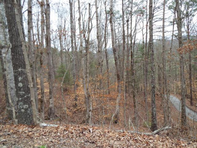 Lot 30 Whippoorwill Hill Way Way, Sevierville, TN 37862 (#1033313) :: Billy Houston Group
