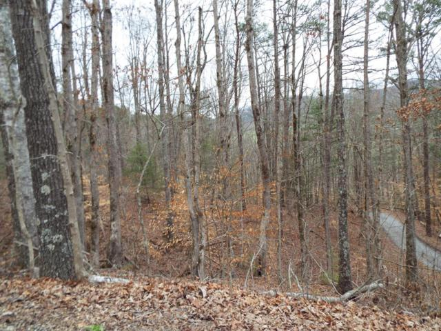 Lot 31 Whippoorwill Hill Way, Sevierville, TN 37862 (#1033315) :: Billy Houston Group