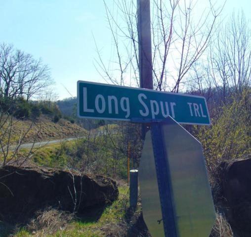 Long Spur Trl, Dandridge, TN 37725 (#1033452) :: Billy Houston Group