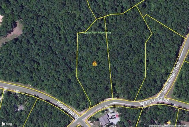 Bama Loop, Jamestown, TN 38556 (#1033492) :: Billy Houston Group