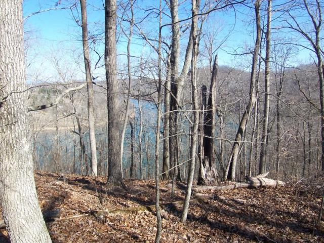 Lot 86 Northbridge Close, Kingston, TN 37763 (#1033526) :: Billy Houston Group
