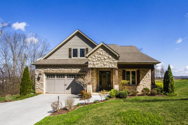 203 Waters Edge Way, Lenoir City, TN 37771 (#1033564) :: Shannon Foster Boline Group