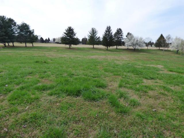 Lot 2509 Saint Andrews Dr, Baneberry, TN 37890 (#1033596) :: Shannon Foster Boline Group
