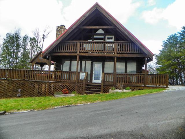 2408 Hatcher Mountain Rd, Sevierville, TN 37862 (#1033616) :: Billy Houston Group